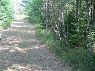 Lot for sale in Saint-Côme, Lanaudière, 471, Chemin de Sainte-Émélie, 23305308 - Centris.ca