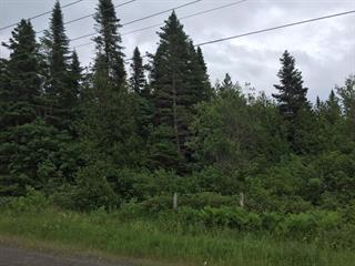 Land for sale in Paspébiac, Gaspésie/Îles-de-la-Madeleine, 4e Avenue Ouest, 10086261 - Centris.ca