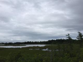 Land for sale in Paspébiac, Gaspésie/Îles-de-la-Madeleine, 4e Avenue Ouest, 26958501 - Centris.ca