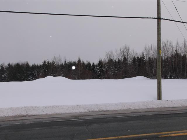 Lot for sale in Irlande, Chaudière-Appalaches, 1, Route  165, 14511011 - Centris.ca