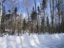 Terrain à vendre à La Pêche, Outaouais, 36, Chemin de la Chapelle, 13578395 - Centris.ca