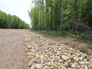 Lot for sale in Très-Saint-Rédempteur, Montérégie, Promenade du Cerf, 17284478 - Centris.ca