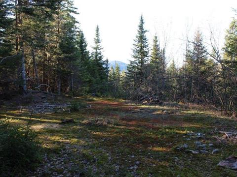 Lot for sale in Stoneham-et-Tewkesbury, Capitale-Nationale, Route  Tewkesbury, 18990564 - Centris.ca