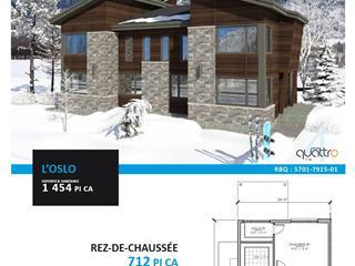 Maison à vendre à Saint-Ferréol-les-Neiges, Capitale-Nationale, 187 - 189, Rue de Coubertin, 24690317 - Centris.ca