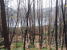 Lot for sale in Lac-aux-Sables, Mauricie, 1130, Chemin du Lac-à-la-Roche, 21480987 - Centris.ca