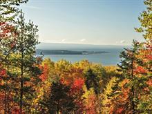 Terrain à vendre à Baie-Saint-Paul, Capitale-Nationale, Chemin des Cerisiers, 22080287 - Centris.ca