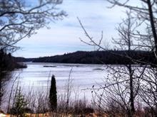 Terrain à vendre à Alma, Saguenay/Lac-Saint-Jean, Chemin du Pic, 17687600 - Centris