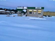 Commercial building for sale in Brompton (Sherbrooke), Estrie, 295 - 297, Rue  Laval, 16708988 - Centris.ca