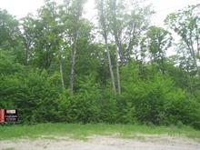 Terrain à vendre à Mont-Laurier, Laurentides, Côte des Tétras, 12936303 - Centris.ca
