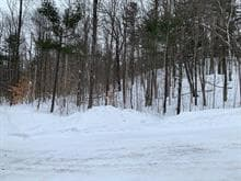 Lot for sale in Notre-Dame-de-Bonsecours, Outaouais, X, Chemin de Montevilla, 20893919 - Centris.ca