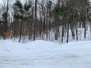 Terrain à vendre à Notre-Dame-de-Bonsecours, Outaouais, X, Chemin de Montevilla, 20893919 - Centris.ca