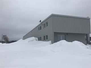 Commercial unit for rent in La Malbaie, Capitale-Nationale, 225, boulevard  Malcolm-Fraser, suite 4, 27126551 - Centris.ca
