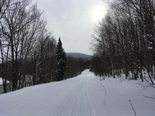 Lot for sale in Notre-Dame-des-Bois, Estrie, 93, Chemin de l'Ours, 10054695 - Centris