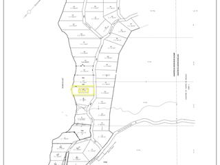 Lot for sale in Saint-Alexis-des-Monts, Mauricie, Rang du Lac-du-Castor, 19864411 - Centris.ca