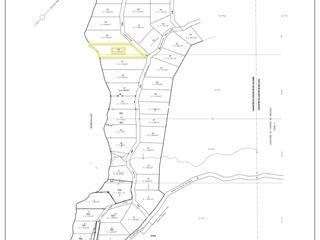Lot for sale in Saint-Alexis-des-Monts, Mauricie, Rang du Lac-du-Castor, 15250250 - Centris.ca