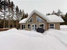 House for sale in Notre-Dame-du-Laus, Laurentides, 61, Chemin des Saules, 23880778 - Centris.ca