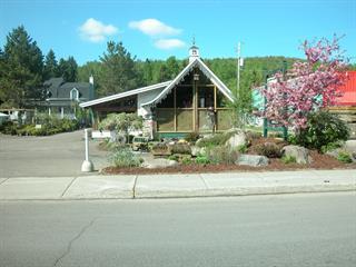 Bâtisse commerciale à vendre à Saint-Donat (Lanaudière), Lanaudière, 982 - 986, Rue  Principale, 27030919 - Centris.ca