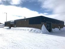 Bâtisse commerciale à vendre à Malartic, Abitibi-Témiscamingue, 1415, Rue  Royale, 27639726 - Centris