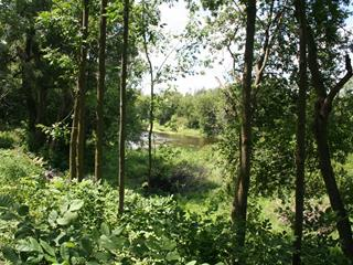 Lot for sale in Saint-Lin/Laurentides, Lanaudière, 411, Rang de la Rivière Sud, 15866296 - Centris.ca