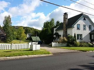 Maison à vendre à Sainte-Agathe-des-Monts, Laurentides, 91, Chemin du Tour-du-Lac, 14009492 - Centris.ca