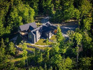 Maison à vendre à Mont-Tremblant, Laurentides, 8, Chemin des Amérindiens, 13987308 - Centris.ca