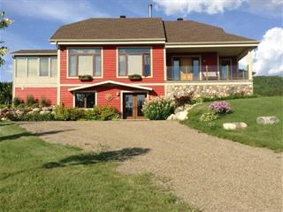 House for sale in Notre-Dame-des-Monts, Capitale-Nationale, 15, Rang  Sainte-Christine, 16691942 - Centris.ca