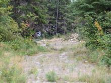 Terrain à vendre à Senneterre - Paroisse, Abitibi-Témiscamingue, Rue  Sigouin, 21192225 - Centris