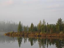 Bâtisse commerciale à vendre à Senneterre - Ville, Abitibi-Témiscamingue, Lac  Suzie, local ZONE 13, 11223624 - Centris.ca
