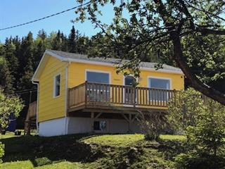 House for sale in Saint-Maxime-du-Mont-Louis, Gaspésie/Îles-de-la-Madeleine, 45, 1re Avenue Ouest, 28014926 - Centris.ca