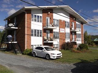 Income properties for sale in Saint-Joseph-de-Coleraine, Chaudière-Appalaches, 83, Avenue  Saint-Patrick, 14831691 - Centris.ca