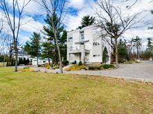 Maison à vendre à Pontiac, Outaouais, 43, Chemin du Phare, 26778327 - Centris.ca