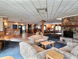 Commercial unit for sale in Saint-Alphonse-Rodriguez, Lanaudière, 324, Rue du Lac-Long Sud, suite 212, 18795577 - Centris.ca