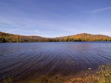 Terrain à vendre in Lac-des-Plages, Outaouais, Chemin du Lac-de-la-Carpe, 12602207 - Centris.ca