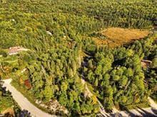 Terrain à vendre à Val-des-Monts, Outaouais, 31, Chemin du Lac-Clair, 19341877 - Centris.ca