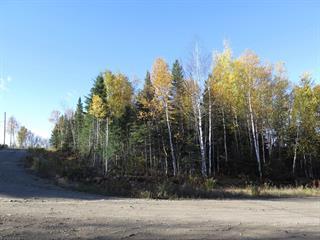 Terrain à vendre à La Malbaie, Capitale-Nationale, Rang du Ruisseau-des-Frênes, 27002133 - Centris.ca