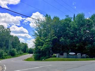 Terrain à vendre à Sainte-Mélanie, Lanaudière, Rue des Pins, 22867714 - Centris.ca