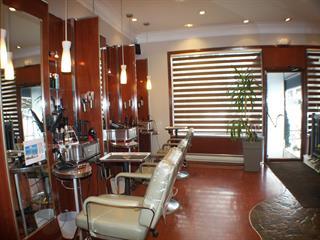 Business for sale in Montréal (Le Sud-Ouest), Montréal (Island), 6400, Rue  Hadley, 22696053 - Centris.ca