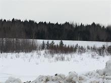 Terrain à vendre à Lac-Bouchette, Saguenay/Lac-Saint-Jean, Rue  Gagnon, 13497051 - Centris.ca