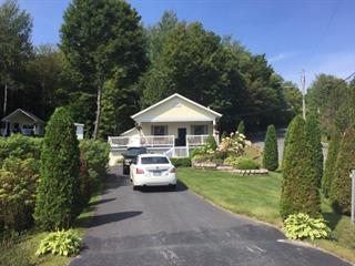 House for sale in Eastman, Estrie, 111, Chemin du Lac-d'Argent, 23935647 - Centris.ca