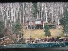 Maison à vendre à Bouchette, Outaouais, 103, Montée  Gorman, 14989858 - Centris
