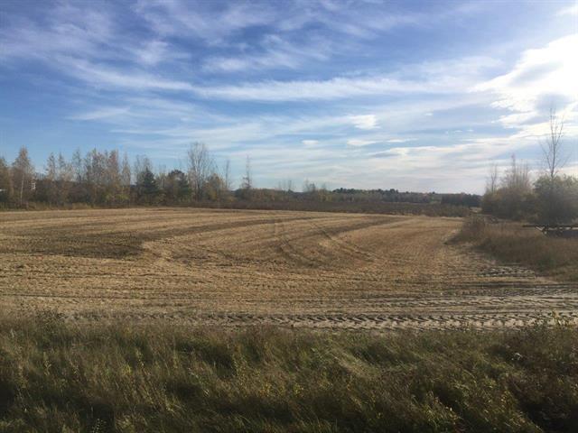 Terre à vendre à Acton Vale, Montérégie, Route  116, 16241001 - Centris.ca