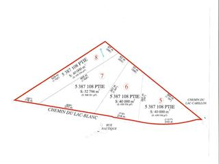 Land for sale in Saint-Ubalde, Capitale-Nationale, Chemin du Lac-Blanc, 24536584 - Centris.ca