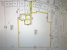 Terrain à vendre à Hemmingford - Canton, Montérégie, Avenue  Margaret, 18413468 - Centris.ca