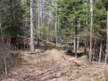 Terrain à vendre à Duhamel, Outaouais, Route  321, 27916421 - Centris.ca