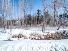 Lot for sale in Pontiac, Outaouais, 108, Avenue des Plages, 21404651 - Centris.ca