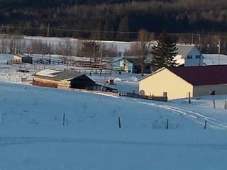 Terre à vendre à Saint-Pierre-Baptiste, Centre-du-Québec, 1151Z, 11e Rang Nord, 10017261 - Centris.ca