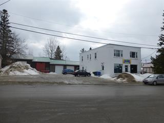Bâtisse commerciale à vendre à Ville-Marie, Abitibi-Témiscamingue, 66, Rue  Sainte-Anne, 19715416 - Centris.ca