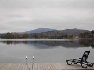 Lot for sale in Lac-Supérieur, Laurentides, Chemin du Refuge, 25711668 - Centris.ca
