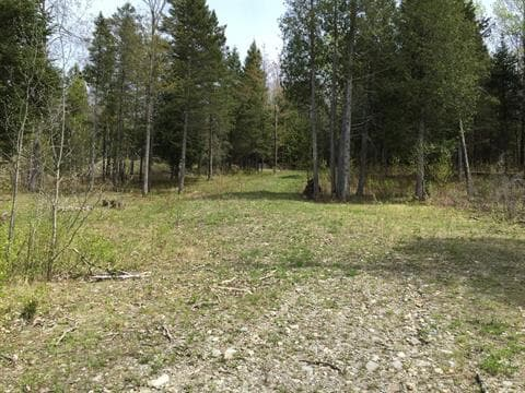 Lot for sale in Inverness, Centre-du-Québec, Chemin de la Seigneurie, 24509193 - Centris.ca