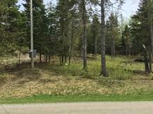 Lot for sale in Inverness, Centre-du-Québec, 116, Chemin de la Seigneurie, 23832848 - Centris.ca